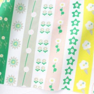 flower stripe -June-(キッチンパステル)