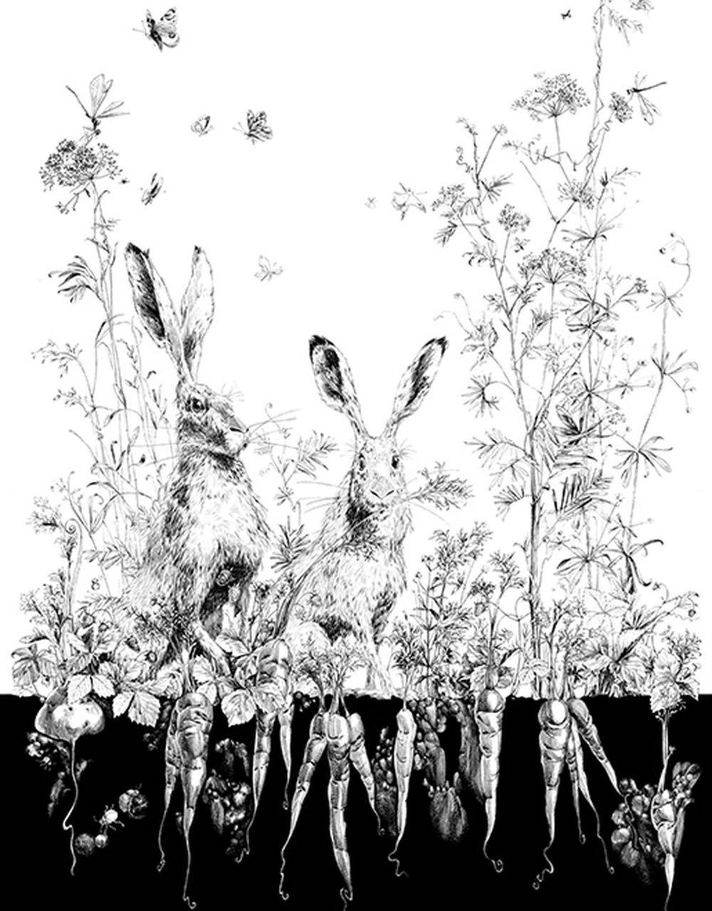 フランス壁紙 1ロール(3m) フリース(不織布) - 防炎加工 by キャサリン・グラン 《リエーブル - 左》 ブラック & ホワイト by Edmond Petit (エドモンプティ)
