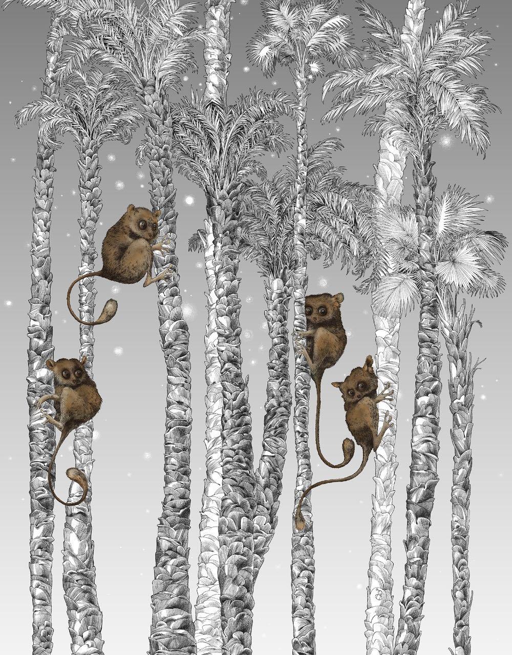 フランス壁紙 1ロール(3m) フリース(不織布) - 防炎加工 by キャサリン・グラン 《ヌイ・コスミック - 左》 ブラック & ホワイト by Edmond Petit (エドモンプティ)