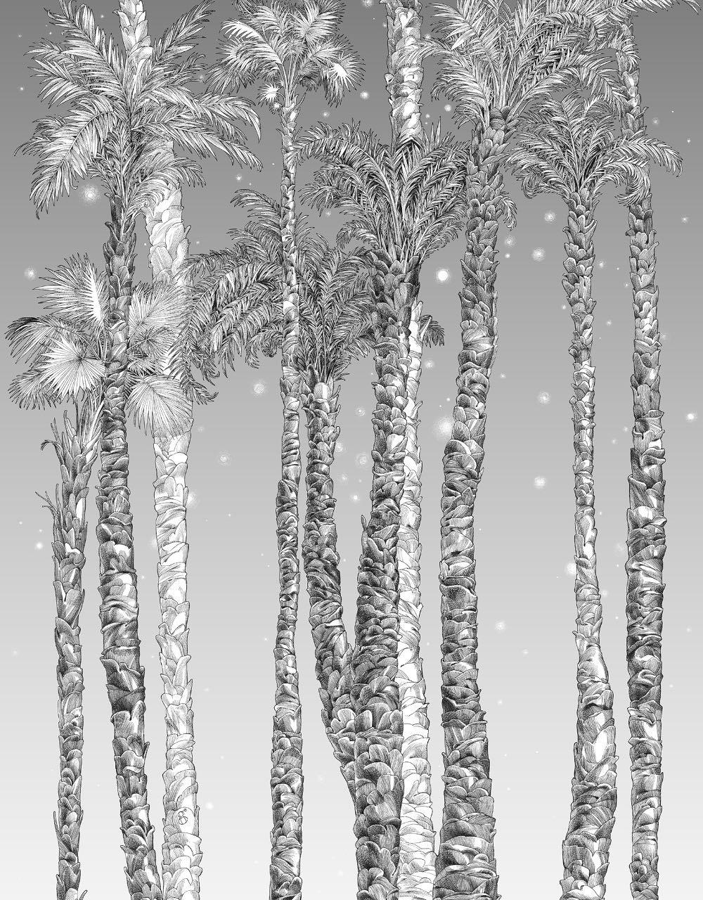 フランス壁紙 1ロール(3m) フリース(不織布) - 防炎加工 by キャサリン・グラン 《ヌイ・エトワール - 右》 ブラック & ホワイト by Edmond Petit (エドモンプティ)