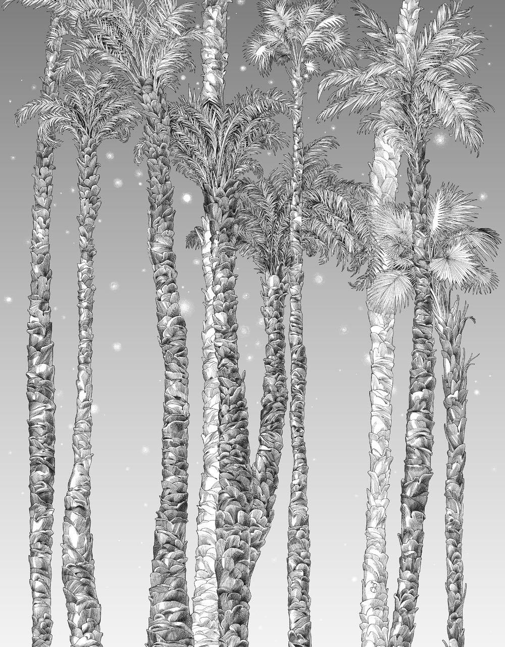 フランス壁紙 1ロール(3m) フリース(不織布) - 防炎加工 by キャサリン・グラン 《ヌイ・エトワール - 左》 ブラック & ホワイト by Edmond Petit (エドモンプティ)