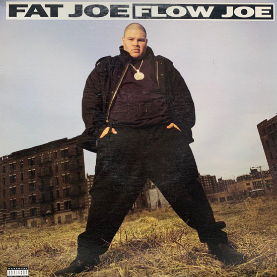 FAT JOE / FLOW JOE (93 US ORIGINAL)
