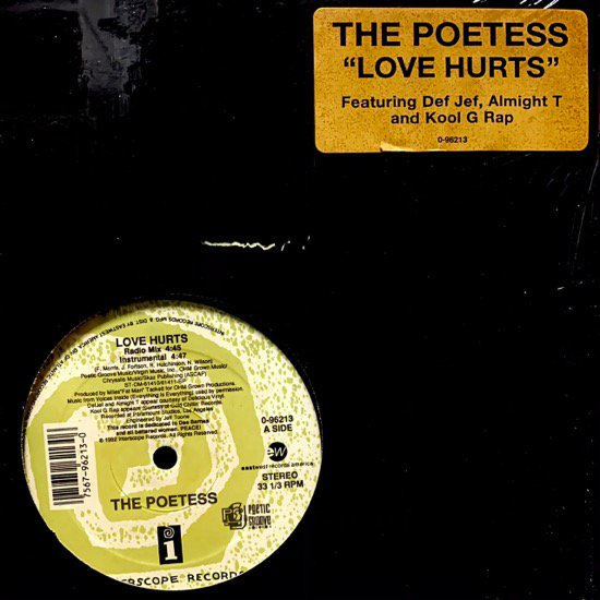 THE POETESS / LOVE HURTS ft KOOLG RAP & DEF JEF