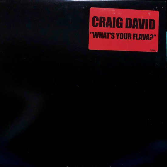 CRAIG DAVID / WHAT'S YOUR FLAVA? (PROMO)