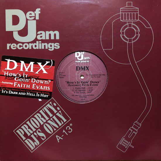 DMX / HOW'S IT GOIN' DOWN / Ruff Ryders' Anthem (PROMO)
