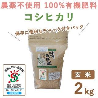 【新米】 滋賀県産 無農薬100%有機肥料 コシヒカリ玄米 2kg
