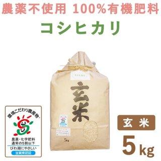 【新米】 滋賀県産 無農薬100%有機肥料 コシヒカリ玄米 5kg