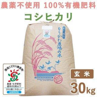 【新米】 滋賀県産 無農薬100%有機肥料 コシヒカリ玄米 30kg