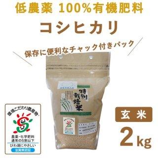 【新米】 滋賀県産 低農薬100%有機肥料 コシヒカリ 玄米2kg