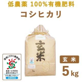 【新米】 滋賀県産 低農薬100%有機肥料 コシヒカリ 玄米5kg
