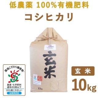 【新米】 滋賀県産 低農薬100%有機肥料 コシヒカリ玄米10kg