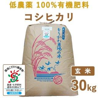 【新米】 滋賀県産 低農薬100%有機肥料 コシヒカリ玄米30kg