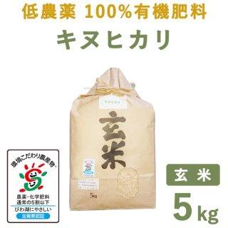 【新米】 滋賀県産低農薬100%有機肥料キヌヒカリ玄米5kg