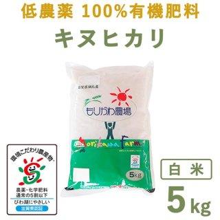 【新米】 滋賀県産低農薬100%有機肥料キヌヒカリ白米5kg