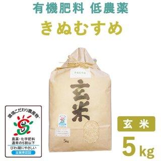 【新米】滋賀県産 きぬむすめ玄米5kg