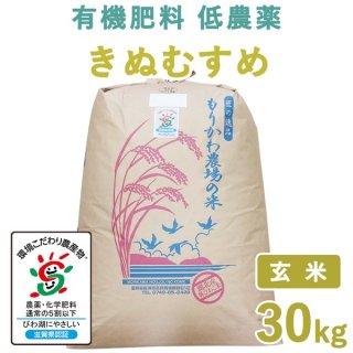 【新米】滋賀県産 きぬむすめ玄米30kg