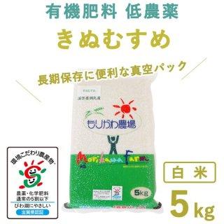 【新米】滋賀県産 きぬむすめ真空白米5kg