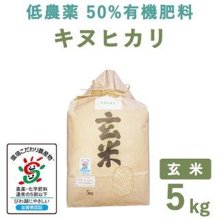 【新米】 滋賀県産低農薬50%有機肥料キヌヒカリ玄米5kg