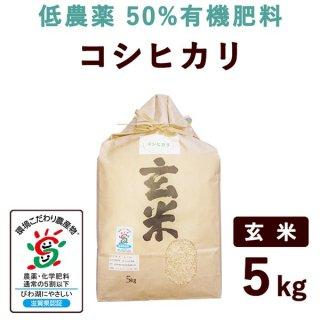 【新米】 滋賀県産 低農薬50%有機肥料コシヒカリ 玄米 5kg