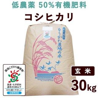 【新米】 滋賀県産 低農薬50%有機肥料コシヒカリ 玄米 30kg