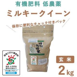 【新米】滋賀県産 ミルキークィーン 玄米 2kg