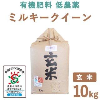 【新米】滋賀県産 ミルキークィーン 玄米 10kg