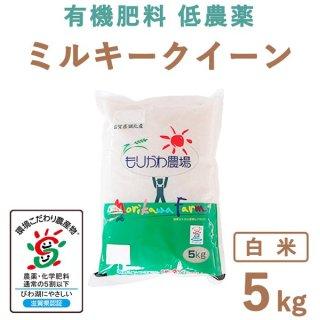 【新米】滋賀県産 ミルキークィーン 白米 5kg