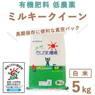 【新米】滋賀県産 ミルキークィーン 真空白米5kg