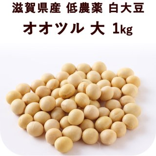滋賀県産 低農薬白大豆 オオツル 大 1kg
