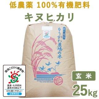 【新米】 滋賀県産低農薬100%有機肥料キヌヒカリ玄米25kg