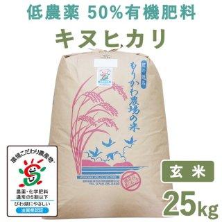 【新米】 滋賀県産低農薬50%有機肥料キヌヒカリ玄米25kg