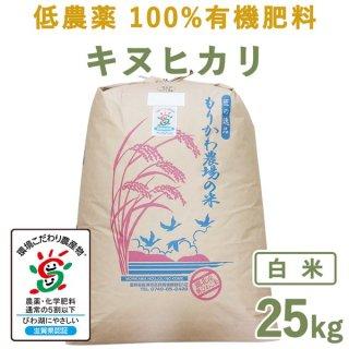 【新米】 滋賀県産低農薬100%有機肥料キヌヒカリ白米25kg