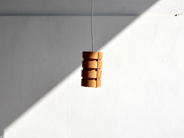 Pendant Lamp (102)