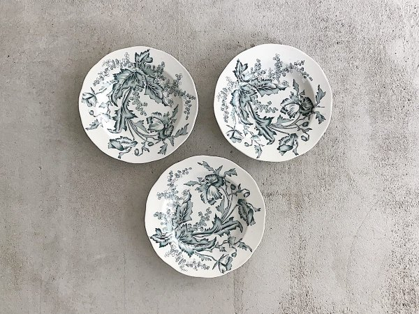Soup Plate (1) /  Wallmo