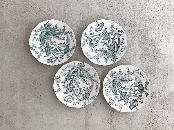 Dinner Plate(4)/  Wallmo