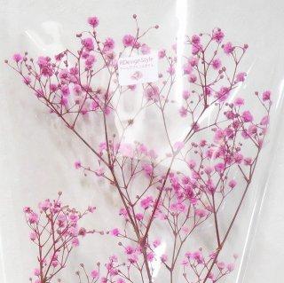 カスミソウ(ピンク) 10g プリザーブドフラワー花材
