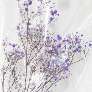 カスミソウ(パープル) 10g プリザーブドフラワー花材