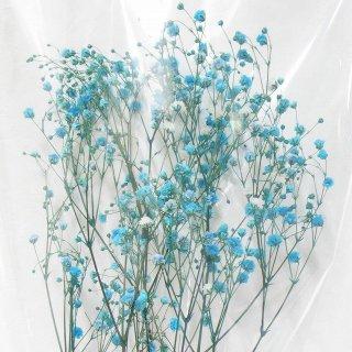 カスミソウ(ブルー) 10g プリザーブドフラワー花材