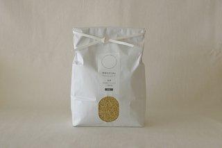 新米【玄米】 自然栽培ササニシキ (自家採種・熊本県産) 1kg
