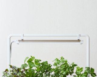 -さかな畑- 植物用 フルスペクトル LED ライト / ライトスタンド (ホワイト)付 / 送料無料