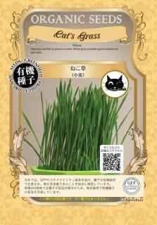 ねこ草 / 有機 種子 固定種 / グリーンフィールド / ペット用 [中袋]