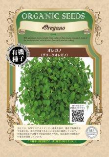 オレガノ / グリークオレガノ / 有機 種子 固定種 / グリーンフィールド / ハーブ [小袋]