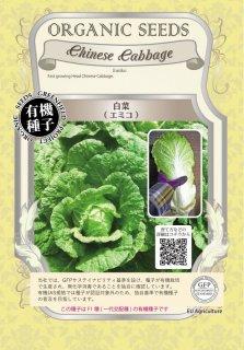 白菜 / エミコ / 有機 種子 / グリーンフィールド / ブラシカ [小袋]