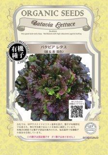 バタビア レタス / 緑 & 赤 混色 / 有機 種子 固定種 / グリーンフィールド / 葉菜 [小袋]