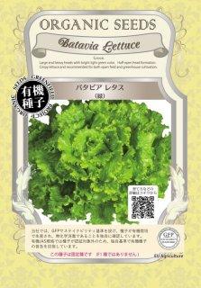 バタビア レタス / 緑 / 有機 種子 固定種 / グリーンフィールド / 葉菜 [小袋]