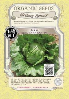 レタス / 結球 / アイスバーグ / 有機 種子 固定種 / グリーンフィールド / 葉菜 [小袋]