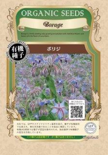ボリジ / 有機 種子 固定種 / グリーンフィールド / ハーブ [小袋]