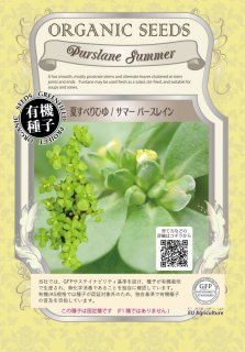 夏 すべりひゆ / サマー パースレイン / 有機 種子 固定種 / グリーンフィールド / 葉菜 [小袋]