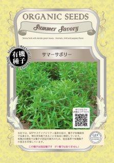サマーサボリー / 有機 種子 固定種 / グリーンフィールド / ハーブ [小袋]