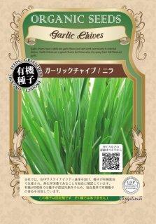 ガーリックチャイブ / ニラ / 有機 種子 固定種 / グリーンフィールド / ハーブ [大袋]